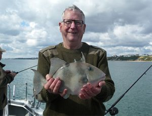 Trigger fish caught on an Inshore Fishing Trip Poole, Dorset