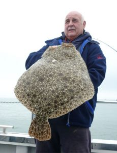 Turbot & Brill fishing Poole, Dorset